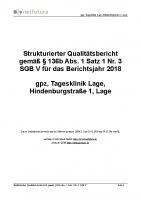 lage_qualitaetsbericht_2018
